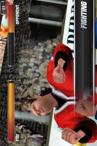 3D冰球联赛2011|玩體育競技App免費|玩APPs