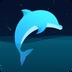 海豚睡眠-听着雨声就睡着了